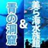 美ら海水族館&青の洞窟